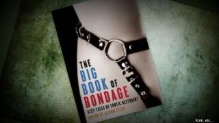 thumb nail big book of bondage review